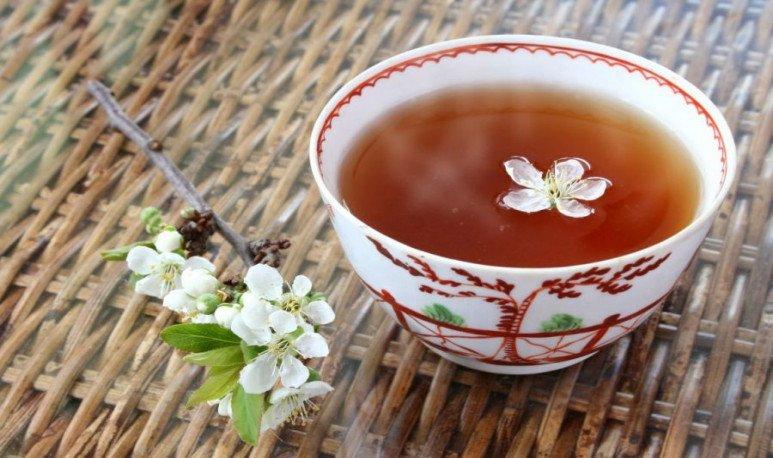 el té en argentina