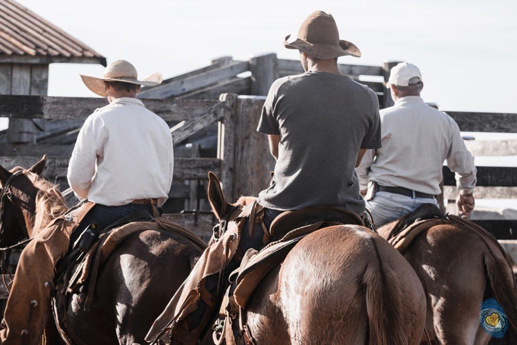 Los cowboys terminaron a los tiros