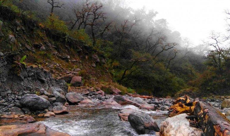 Parque-Nacional-Campo-de-los-Alisos