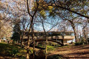 Casa-del-Puente