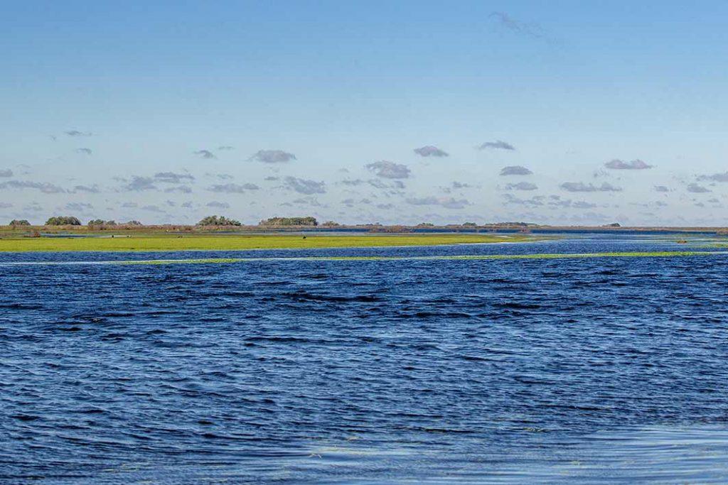Esteros-del-Ibera