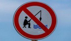 Pesca-veda