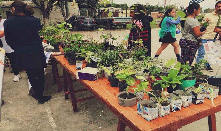 planting-life