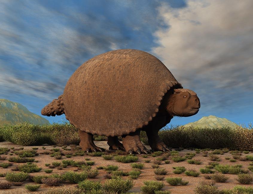 Restos-fósiles