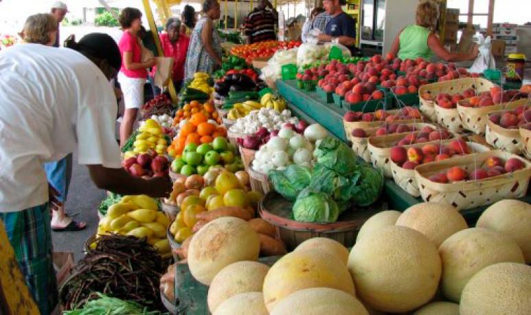 Feria-agroecológica-4