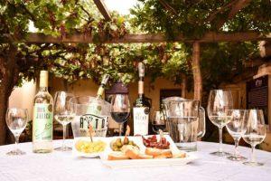 ruta del vino ppal (1)