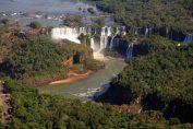 El despertar de la selva misionera