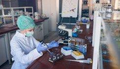coronavirus laboratorio