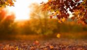 leyenda otoño