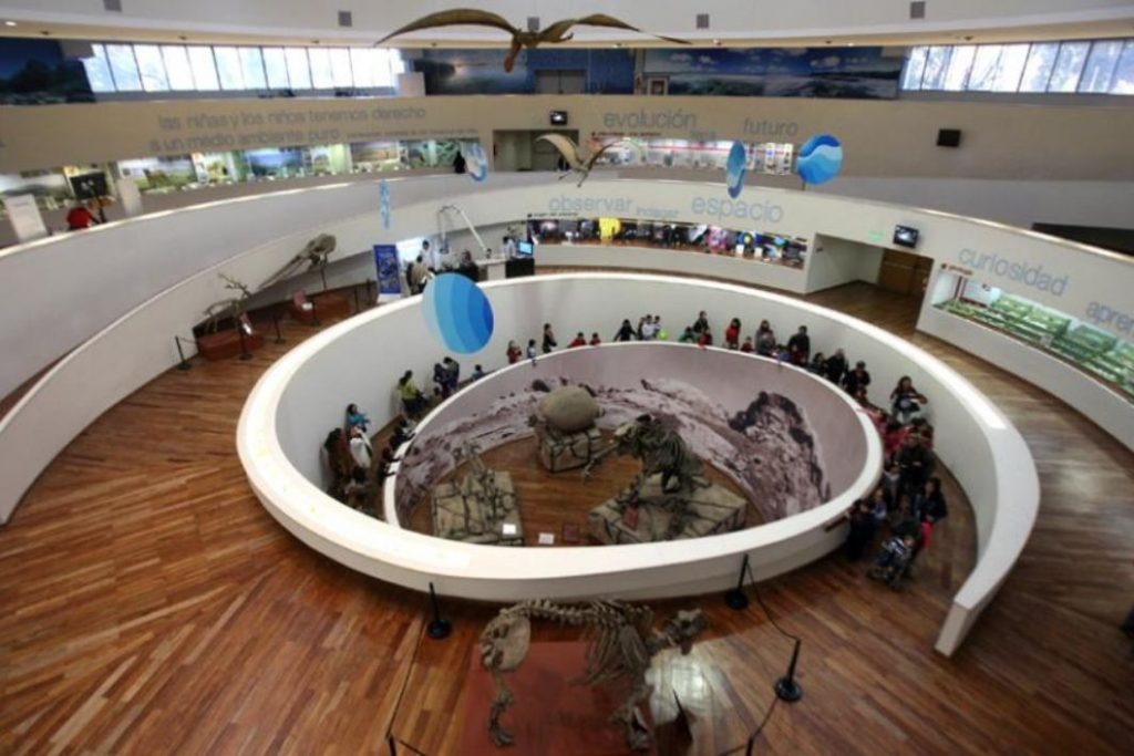 Museos cordobeses