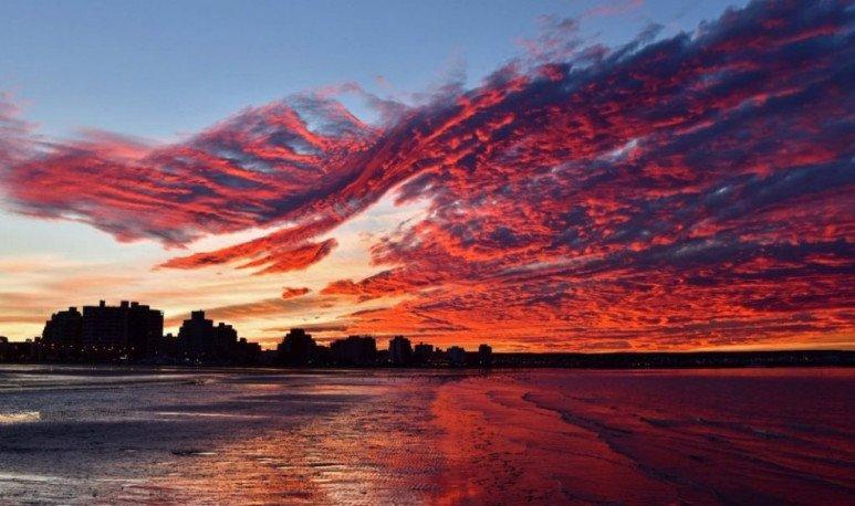 Madryn coast