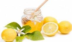 Tucumán podría producir miel de azahar de limón