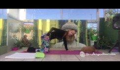 Clases de Yoga por Celina VII