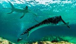 plesiosaurio vivo en Chubut
