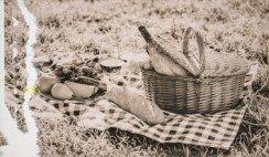 Un picnic nacional: los estudiantes a través del tiempo