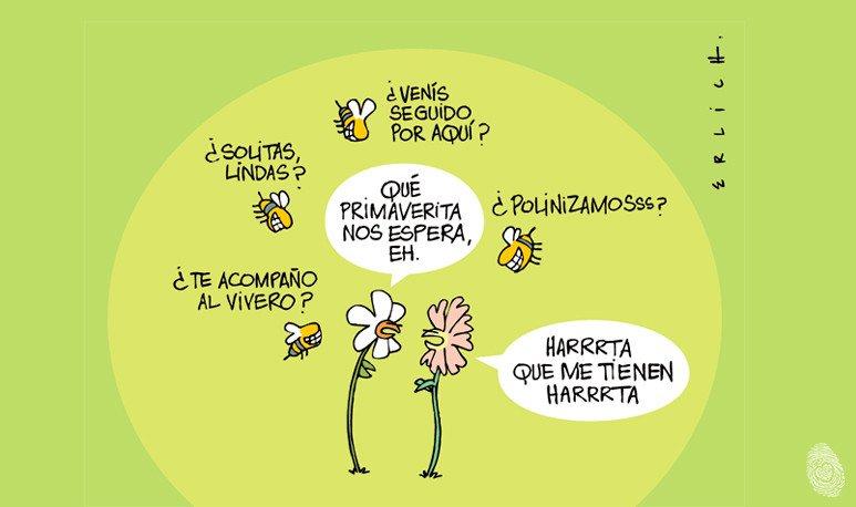 Humor-de-primavera