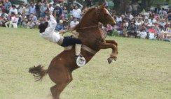 San Cristóbal: maestros del caballo