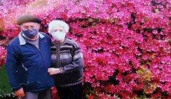 Las azaleas florecen y el amor crece