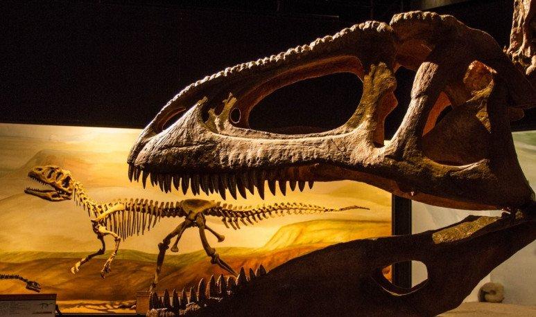 6 museos que tenés es que visitar en Chubut