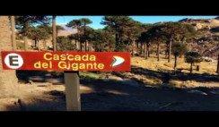 Ruta del Pehuén - Neuquén - Patagonia Argentina
