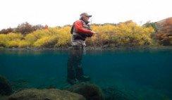 Pesca Neuquén