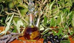 ruta del olivo en san juan